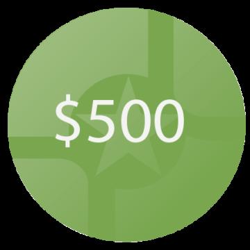 500 Circle Icon